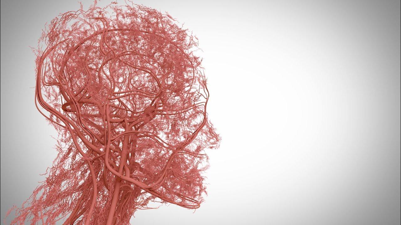 頭皮の血流改善